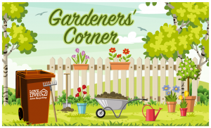 Text saying Gardeners' Corner above a image of a well kept garden